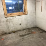 Volunteer Mold Knoxville