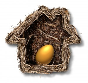 Photo of a birds nest shaped like a house with an egg resting in it.